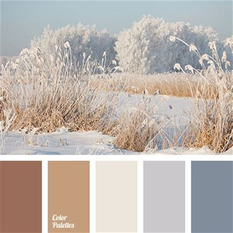 colors that match grey 25 best ideas about winter color palettes on