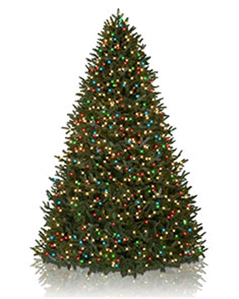 white tree colored lights tree with white and colored 28 images swings black and