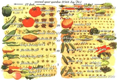 self sufficient vegetable garden vegetable self sufficiency