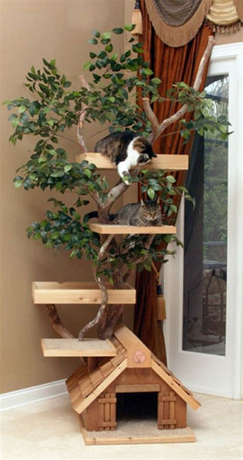 best tree for cats best 25 cat trees ideas on cat trees