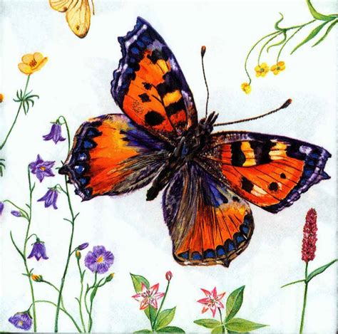 butterfly decoupage paper decoupage paper napkins of five butterflies chiarotino