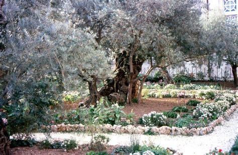Garten In Der Bibel by Land Der Bibel
