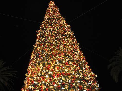 la historia arbol de navidad la historia 225 rbol de navidad taringa