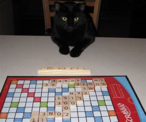 top 10 scrabble words the top 10 highest scoring 7 letter words you use in scrabble