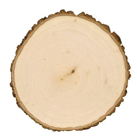 slice of wood slice styled x3 risenmay