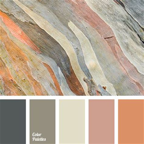 colors that match grey best 25 beige color palette ideas on colors
