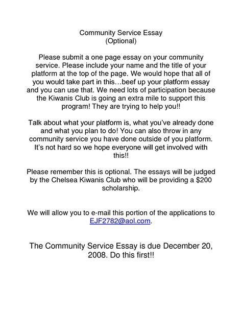 essay community service 187 online writing service