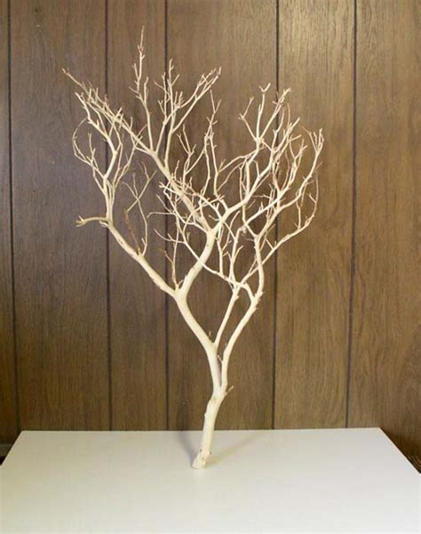 display tree manzanita burlworks display jewelry trees sandblasted