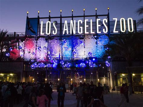 la lights la zoo lights things to do in los angeles