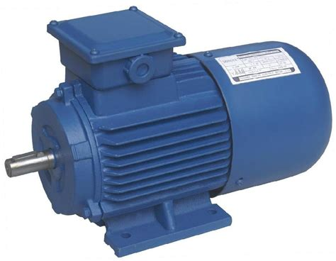 Induction Motor by Induction Motor Pe Vibro India Manufacturer Motors