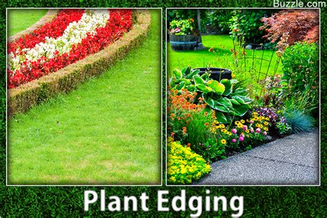 garden border plants flowers colorful flower bed border attractive flower bed edging ideas