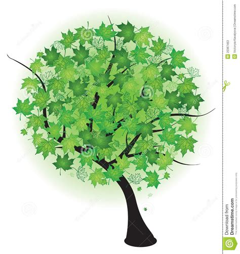 14 nature summer tree vector images free tree vector weeping willow tree vector and