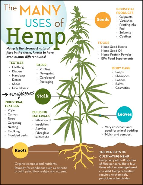 uses for many uses of hemp poster national hemp association
