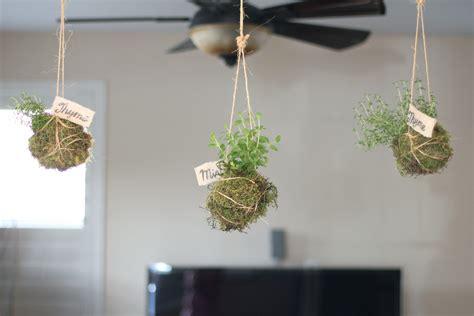 indoor hanging garden ideas hanging from ceiling diy hanging indoor garden planter