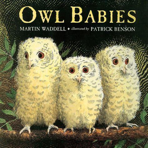 Owl Babies Unit Study Homeschool Jabber