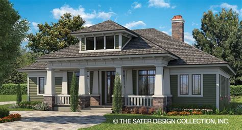 luxery home plans small luxury house plans sater design collection home plans