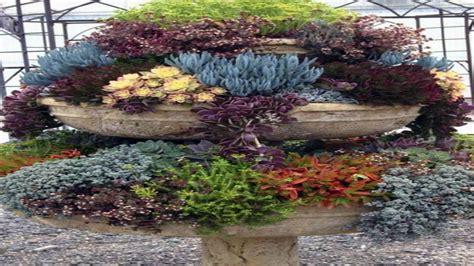 succulent garden ideas succulents garden ideas pots for succulent gardens