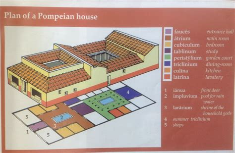 y7 lat plan of a pompeian house