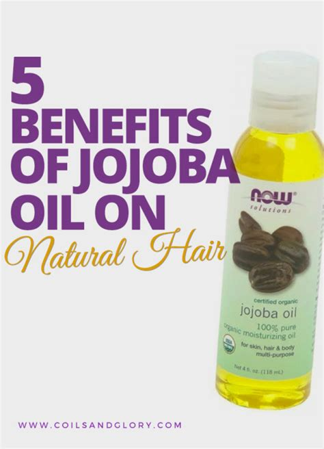 jojoba benefits 5 benefits of jojoba on hair coils