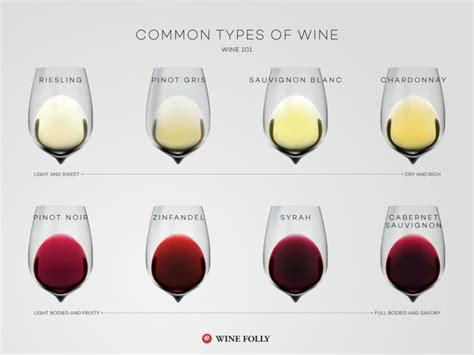 different types of wine basics a beginner s guide to wine wine folly