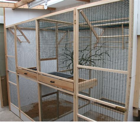 indoor plan related keywords suggestions for indoor bird aviary plans