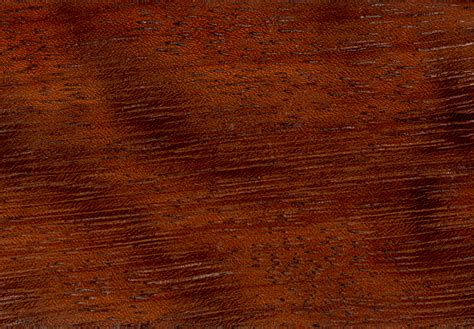 woodworker source file iroko wood jpg wikimedia commons