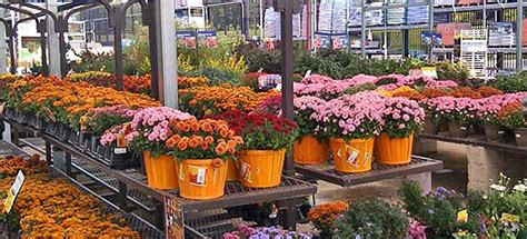 lowes garden center flowers discover experience arlington heights arlington