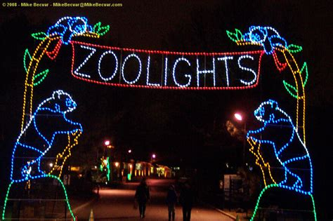 zoo lights miami zoolights what s up jacksonville