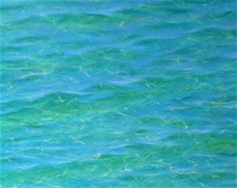 acrylic painting water techniques learn how to paint amazing luminous clear tropical water