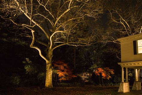 best outdoor lighting system mclean and northern virginia led systems low voltage home volt