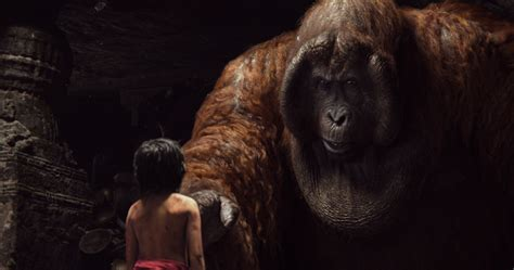 pictures of jungle book the jungle book