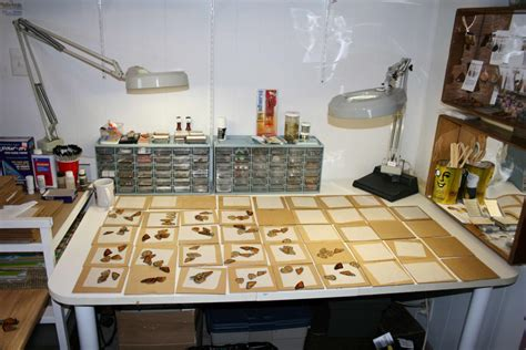 jewelry work table the of jewelry made of real butterfly wings