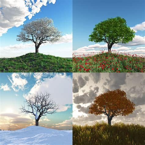 chagne trees superstitions sur les quatre saisons