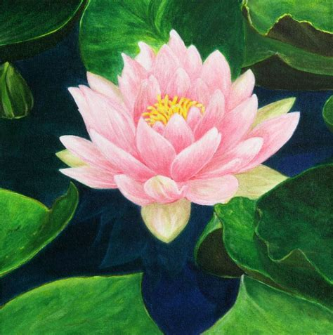 acrylic painting water lilies 977 best images about water lilies on water
