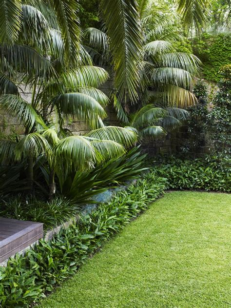 tropical landscaping ideas best 25 tropical landscaping ideas only on