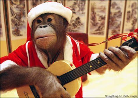 monkey santa on a rainy monkey s
