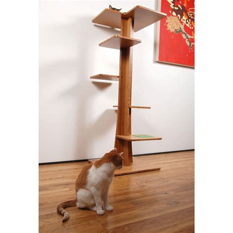 tree for cats baobab cat tree by square cat habitat