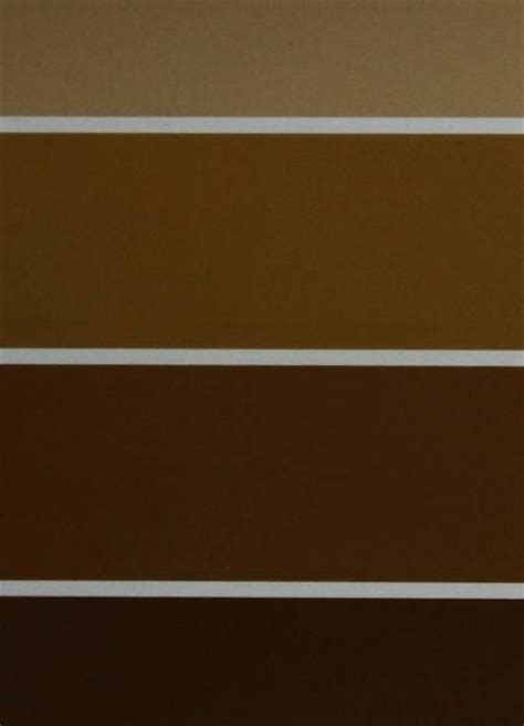 paint colors shades pin by angela on rich brown
