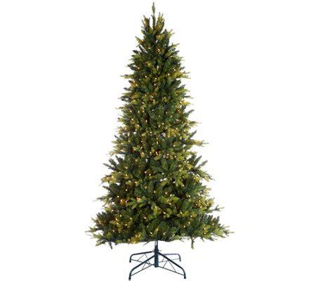 qvc bethlehem lights trees bethlehem lights 7 5 prelit noble spruce tree w multi