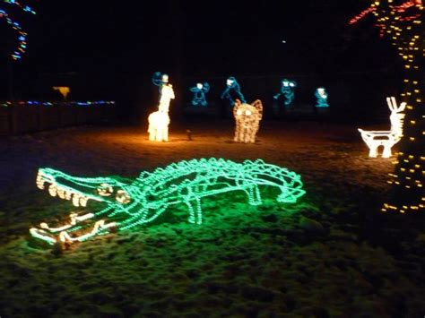 zoo lights utah hogle zoo hogle quot zoo lights quot at picture of utah s hogle