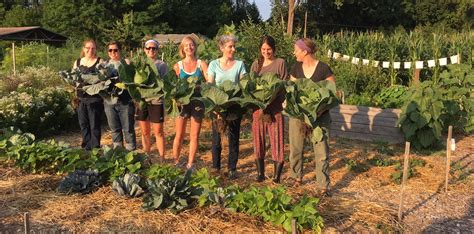 How To Start An Organic Garden by Community Teaching Garden Vermont Community Garden Network