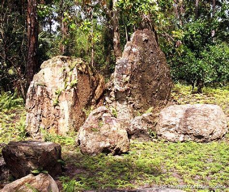 florida rock garden early rock garden