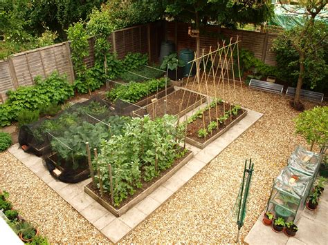 kitchen vegetable garden s veg plot allotment controversies