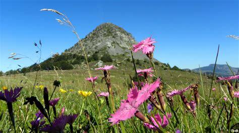 le mont gerbier des joncs landscape rural photos tede photoblog