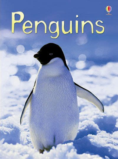 penguin picture books usborne books at home catalogue