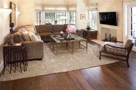 cheap area rugs for rooms rugs for cozy living room area rugs ideas roy home design