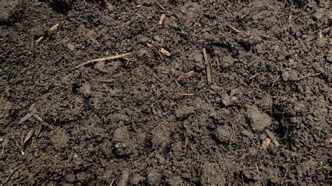 Der Garten Erde by Der Optimale Boden F 252 R Ihre Pflanzen Informationen 252 Ber