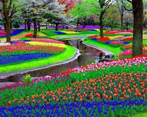 netherlands flower garden the netherlands the world s flower garden