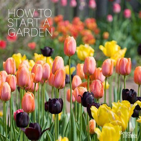 flower gardening for dummies 25 best ideas about gardening for dummies on