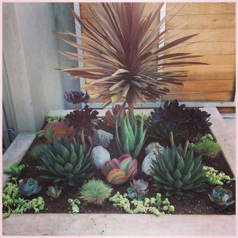 unique planters for succulents unique planters for succulents container designs with